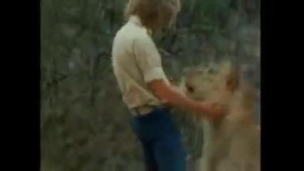Историята За Лъвът Крисчън