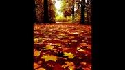 Мария Петрова - Иди си, есен