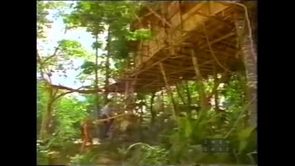Приключенията На Тарзан - Сезон 1 - Епизод 21 - Tarzan Tames The Bronx