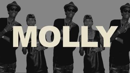 Лудница! Tyga ft. Wiz Khalifa & Mally Mall - Molly