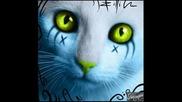 Play ft. Win ft. Alessia ft. Bob Taylor - Deja vu [kitty]