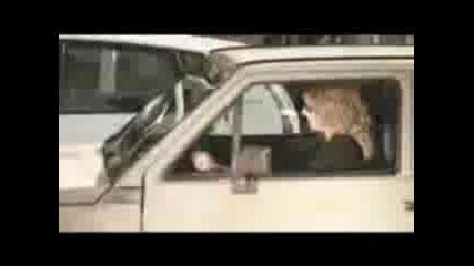 Идиот, не може да паркира!!