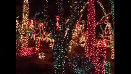 Christmas Cactus Garden Las Vegas