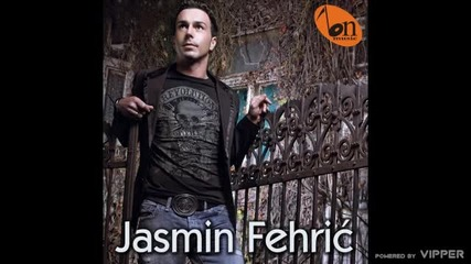 Jasmin Fehric - Ti mene vise ne trebas - (audio) - 2010