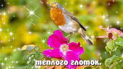 Доброе утро! Хочу твой день наполнить чудесами !