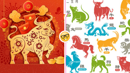 Каква ще е годината за всяка зодия според китайския хороскоп