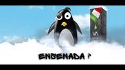 Ревю на течност : Ensenada