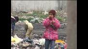 Глад - Роми се хранят от боклука