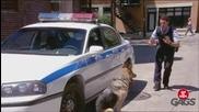 Скрита камера куче полицай!
