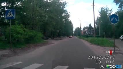 Гълъб пресича на пешеходна