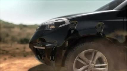 Renault Koleos. Дрес-код.