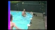 Смях С Кучетата