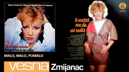Vesna Zmijanac - Malo, malo, pomalo - (Audio 1984)
