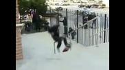 Жестоки падания със скейт... (болезнено!!!)