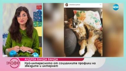 Андреа Банда Банда - най-интересното от социалните мрежи на звездите - На кафе (18.12.2018)