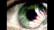 Slayer - Eyes Of The Insane video