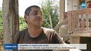 Бащата на избягалия от затвора Радослав Колев пред NOVA