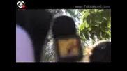 Tokio Hotel Tv [episode 43] Mtv Vma 2008 Music, Mayhem, със bg суб.