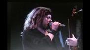 Lynyrd Skynyrd - Swamp Music ( Live 1996 )