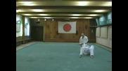 Shodan tsukkomi