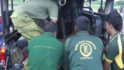 Sri Lanka: Baby elephant safely yanked from a drain in Hambantota
