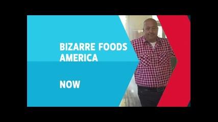 Странни храни в Америка: Аляска ( Бг Аудио )