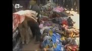 500 жертви на сблъсъци в Нигерия