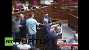 Ukraine: Rada brawl after MP calls Right Sector an 'armed gang'