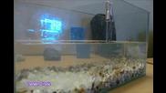 как се пражи светещ аквариум Usb