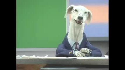 Куче Говори