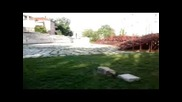 Team Undisputed - Hello Summer Video