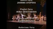 The Sleeping Beauty Kirov/marinsky Ballet 30