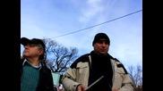 Дежурните от Столичен инспекторат - Казусът с вековния Чинар в община Борово