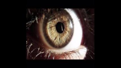 eyes/очи