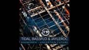 Bass Flo & Jay Le Roc - Anamorph