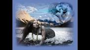 Lara Fabian - Quedate - Превод