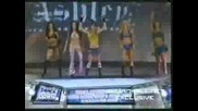 Wwe Divas - Tribute