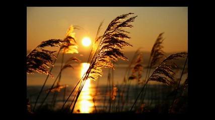 Michael Muller - Als die goldne Abendsonne