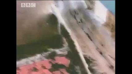 Изключително оцеляване - Мега цунами в Аляска