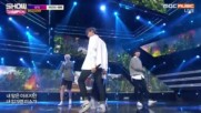 256.0215-4 Sf9 - Still My Lady, Show Champion E216 (150217)