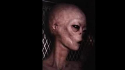 Извънземните съществуват