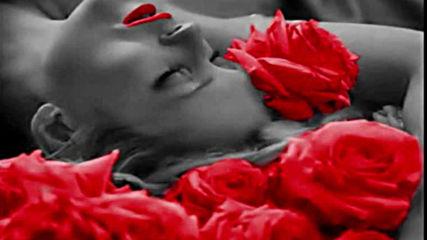 Sneza Ilic - Moje te usne ljubile