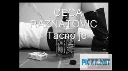 Ceca Raznatovic - Tacno je