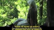 Как горите лекуват хората - филм за горите и за теб