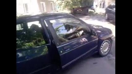 Renault Clio - malkoto zverche na Cliopatra