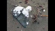 Chinchilla - Broken Heart
