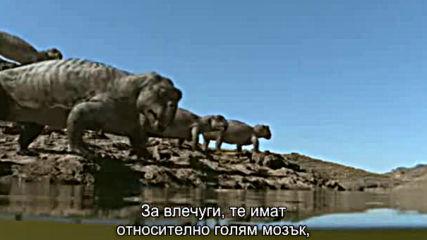Животът преди динозаврите ( Life Before Dinosaurs ) E03