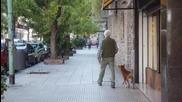 Ето какво е Любовта - Куче предано на своя приятел и стопанин!