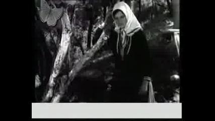 Tose Proeski - Zena Balkanska
