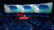 Ted2017: The Future You in Cinemas Trailer Bg